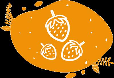 pictogramme ou picto représentant des fraises biologiques de saison cueillies à maturité pour mettre dans nos smoothies