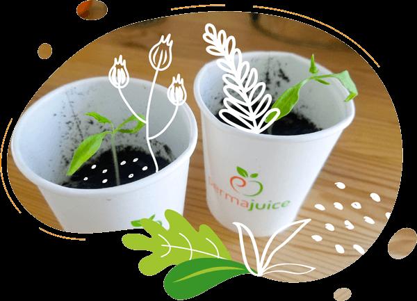nos gobelets permajuice en mono matériau ont le label ok compost home. ils sont compostables et biodégradables dans un composteur classique individuel