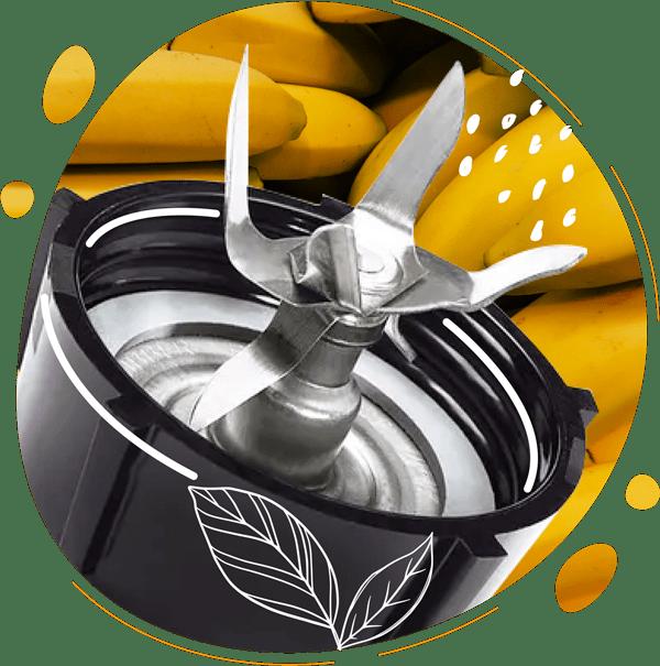 Les lames en acier inox du blender oster