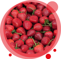 Un smoothie biologique à la fraise