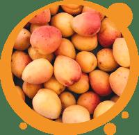 Un smoothie biologique à la mangue