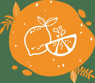 Réalisez de délicieuses citronnades biologiques avec le vélo mélangeur