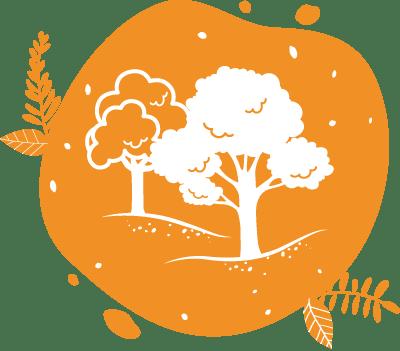ces illustrations d'arbres représentent la gestion durable des forêts