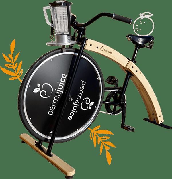 Cette photo présente le vélo smoothie en bois détouré avec de part et d'autre des feuillages oranges