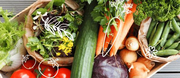panier de légumes biologiques à mortain bocage direct producteur local